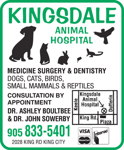 Kingsdale Animal Hospital (905-833-5401) - Display Ad - KINGSDALE ANIMAL HOSPITAL DOGS, CATS, BIRDS, SMALL MAMMALS & REPTILES CONSULTATION BY APPOINTMENT DR. ASHLEY BOULTBEE & DR. JOHN SOWERBY