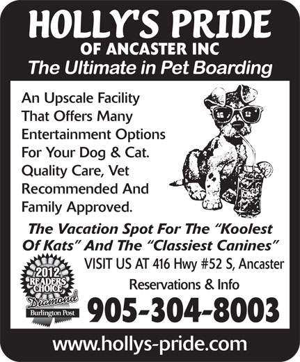 Holly's Pride-Hotel For Pets (905-336-8494) - Display Ad - OF ANCASTER INC An Upscale Facility That Offers Many Entertainment Options For Your Dog & Cat. Quality Care, Vet Recommended And Family Approved. The Vacation Spot For The  Koolest Of Kats  And The  Classiest Canines VISIT US AT 416 Hwy #52 S, Ancaster 2012 Reservations & Info Diamond 905-304-8003 www.hollys-pride.com