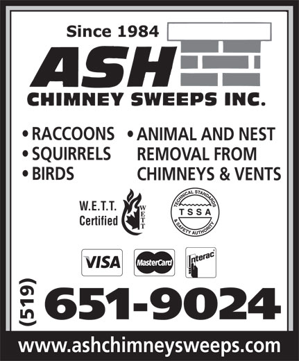Ash Chimney Sweeps Inc (519-651-9024) - Annonce illustrée======= - RACCOONS ANIMAL AND NEST SQUIRRELS REMOVAL FROM BIRDS CHIMNEYS & VENTS W.E.T.T. Certified 651-9024 (519) www.ashchimneysweeps.com