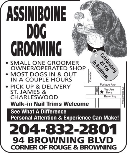 Assiniboine Dog Grooming (204-832-2801) - Display Ad - ASSINIBOINE DOG Celebrating GROOMING 25 Yrsin Business SMALL ONE GROOMER OWNER/OPERATED SHOP MOST DOGS IN & OUT IN A COUPLE HOURS Cavalier Portage Ave Rouge PICK UP & DELIVERY We Are Here ST. JAMES & CHARLESWOOD Westwood Dr Browning Walk-in Nail Trims Welcome See What A Difference Personal Attention & Experience Can Make! 204-832-2801 94 BROWNING BLVD CORNER OF ROUGE & BROWNING ASSINIBOINE DOG Celebrating GROOMING 25 Yrsin Business SMALL ONE GROOMER OWNER/OPERATED SHOP MOST DOGS IN & OUT IN A COUPLE HOURS Cavalier Portage Ave Rouge PICK UP & DELIVERY We Are Here ST. JAMES & CHARLESWOOD Westwood Dr Browning Walk-in Nail Trims Welcome See What A Difference Personal Attention & Experience Can Make! 204-832-2801 94 BROWNING BLVD CORNER OF ROUGE & BROWNING