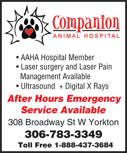 Companion Animal Hospital (306-783-3349) - Annonce illustrée======= - Management Available Ultrasound  + Digital X Rays After Hours Emergency Service Available 308 Broadway St W Yorkton 306-783-3349 Toll Free 1-888-437-3684 AAHA Hospital Member Laser surgery and Laser Pain