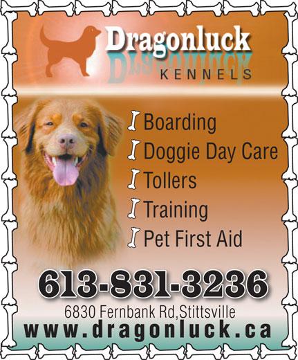 Dragonluck Kennels (613-831-3236) - Display Ad - Boarding Doggie Day Care Tollers Training Pet First Aid 613-831-3236 6830 Fernbank Rd,Stittsville6830 Fnbk Rd,Stittille www.dragonluck.ca