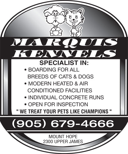"Marquis Kennels (905-679-4666) - Display Ad - MARQUIS KENNELS SPECIALIST IN: BOARDING FOR ALL BREEDS OF CATS & DOGS MODERN HEATED & AIR CONDITIONED FACILITIES INDIVIDUAL CONCRETE RUNS OPEN FOR INSPECTION "" WE TREAT YOUR PETS LIKE CHAMPIONS "" () 905 679-4666 MOUNT HOPE 2300 UPPER JAMES MARQUIS KENNELS SPECIALIST IN: BOARDING FOR ALL BREEDS OF CATS & DOGS MODERN HEATED & AIR CONDITIONED FACILITIES INDIVIDUAL CONCRETE RUNS OPEN FOR INSPECTION "" WE TREAT YOUR PETS LIKE CHAMPIONS "" () 905 679-4666 MOUNT HOPE 2300 UPPER JAMES MARQUIS KENNELS SPECIALIST IN: BOARDING FOR ALL BREEDS OF CATS & DOGS MODERN HEATED & AIR CONDITIONED FACILITIES INDIVIDUAL CONCRETE RUNS OPEN FOR INSPECTION "" WE TREAT YOUR PETS LIKE CHAMPIONS "" () 905 679-4666 MOUNT HOPE 2300 UPPER JAMES  MARQUIS KENNELS SPECIALIST IN: BOARDING FOR ALL BREEDS OF CATS & DOGS MODERN HEATED & AIR CONDITIONED FACILITIES INDIVIDUAL CONCRETE RUNS OPEN FOR INSPECTION "" WE TREAT YOUR PETS LIKE CHAMPIONS "" () 905 679-4666 MOUNT HOPE 2300 UPPER JAMES  MARQUIS KENNELS SPECIALIST IN: BOARDING FOR ALL BREEDS OF CATS & DOGS MODERN HEATED & AIR CONDITIONED FACILITIES INDIVIDUAL CONCRETE RUNS OPEN FOR INSPECTION "" WE TREAT YOUR PETS LIKE CHAMPIONS "" () 905 679-4666 MOUNT HOPE 2300 UPPER JAMES  MARQUIS KENNELS SPECIALIST IN: BOARDING FOR ALL BREEDS OF CATS & DOGS MODERN HEATED & AIR CONDITIONED FACILITIES INDIVIDUAL CONCRETE RUNS OPEN FOR INSPECTION "" WE TREAT YOUR PETS LIKE CHAMPIONS "" () 905 679-4666 MOUNT HOPE 2300 UPPER JAMES  MARQUIS KENNELS SPECIALIST IN: BOARDING FOR ALL BREEDS OF CATS & DOGS MODERN HEATED & AIR CONDITIONED FACILITIES INDIVIDUAL CONCRETE RUNS OPEN FOR INSPECTION "" WE TREAT YOUR PETS LIKE CHAMPIONS "" () 905 679-4666 MOUNT HOPE 2300 UPPER JAMES  MARQUIS KENNELS SPECIALIST IN: BOARDING FOR ALL BREEDS OF CATS & DOGS MODERN HEATED & AIR CONDITIONED FACILITIES INDIVIDUAL CONCRETE RUNS OPEN FOR INSPECTION "" WE TREAT YOUR PETS LIKE CHAMPIONS "" () 905 679-4666 MOUNT HOPE 2300 UPPER JAMES  MARQUIS KENNELS SPECIALIST IN: BOARDING FOR ALL BREEDS OF CATS & DOGS MODERN HEATED & AIR CONDITIONED FACILITIES INDIVIDUAL CONCRETE RUNS OPEN FOR INSPECTION "" WE TREAT YOUR PETS LIKE CHAMPIONS "" () 905 679-4666 MOUNT HOPE 2300 UPPER JAMES  MARQUIS KENNELS SPECIALIST IN: BOARDING FOR ALL BREEDS OF CATS & DOGS MODERN HEATED & AIR CONDITIONED FACILITIES INDIVIDUAL CONCRETE RUNS OPEN FOR INSPECTION "" WE TREAT YOUR PETS LIKE CHAMPIONS "" () 905 679-4666 MOUNT HOPE 2300 UPPER JAMES  MARQUIS KENNELS SPECIALIST IN: BOARDING FOR ALL BREEDS OF CATS & DOGS MODERN HEATED & AIR CONDITIONED FACILITIES INDIVIDUAL CONCRETE RUNS OPEN FOR INSPECTION "" WE TREAT YOUR PETS LIKE CHAMPIONS "" () 905 679-4666 MOUNT HOPE 2300 UPPER JAMES  MARQUIS KENNELS SPECIALIST IN: BOARDING FOR ALL BREEDS OF CATS & DOGS MODERN HEATED & AIR CONDITIONED FACILITIES INDIVIDUAL CONCRETE RUNS OPEN FOR INSPECTION "" WE TREAT YOUR PETS LIKE CHAMPIONS "" () 905 679-4666 MOUNT HOPE 2300 UPPER JAMES  MARQUIS KENNELS SPECIALIST IN: BOARDING FOR ALL BREEDS OF CATS & DOGS MODERN HEATED & AIR CONDITIONED FACILITIES INDIVIDUAL CONCRETE RUNS OPEN FOR INSPECTION "" WE TREAT YOUR PETS LIKE CHAMPIONS "" () 905 679-4666 MOUNT HOPE 2300 UPPER JAMES  MARQUIS KENNELS SPECIALIST IN: BOARDING FOR ALL BREEDS OF CATS & DOGS MODERN HEATED & AIR CONDITIONED FACILITIES INDIVIDUAL CONCRETE RUNS OPEN FOR INSPECTION "" WE TREAT YOUR PETS LIKE CHAMPIONS "" () 905 679-4666 MOUNT HOPE 2300 UPPER JAMES"