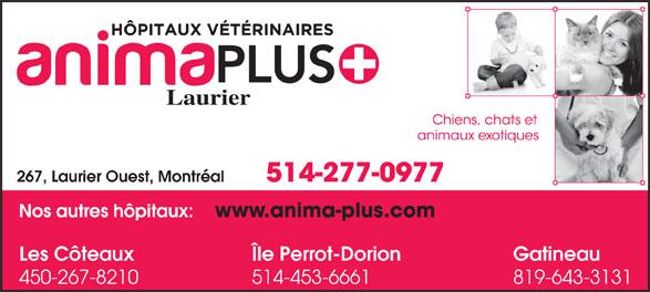 Hôpital Vétérinaire Anima-Plus Laurier (514-277-0977) - Annonce illustrée======= - Laurier 514-277-0977 267, Laurier Ouest, Montréal GatineauLes Côteaux Île Perrot-Dorion 819-643-3131450-267-8210 514-453-6661