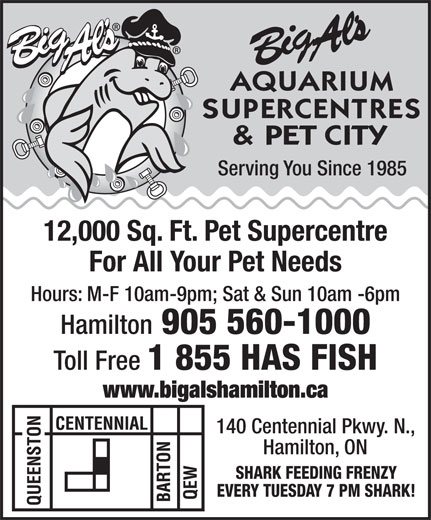 Big Al's Aquarium Supercentres & Pet City (905-560-1000) - Display Ad - Serving You Since 1985 12,000 Sq. Ft. Pet Supercentre For All Your Pet Needs Hours: M-F 10am-9pm; Sat & Sun 10am -6pm Hamilton 905 560-1000 Toll Free 1 855 HAS FISH www.bigalshamilton.ca 140 Centennial Pkwy. N., Hamilton, ON SHARK FEEDING FRENZY EVERY TUESDAY 7 PM SHARK!  Serving You Since 1985 12,000 Sq. Ft. Pet Supercentre For All Your Pet Needs Hours: M-F 10am-9pm; Sat & Sun 10am -6pm Hamilton 905 560-1000 Toll Free 1 855 HAS FISH www.bigalshamilton.ca 140 Centennial Pkwy. N., Hamilton, ON SHARK FEEDING FRENZY EVERY TUESDAY 7 PM SHARK!  Serving You Since 1985 12,000 Sq. Ft. Pet Supercentre For All Your Pet Needs Hours: M-F 10am-9pm; Sat & Sun 10am -6pm Hamilton 905 560-1000 Toll Free 1 855 HAS FISH www.bigalshamilton.ca 140 Centennial Pkwy. N., Hamilton, ON SHARK FEEDING FRENZY EVERY TUESDAY 7 PM SHARK!