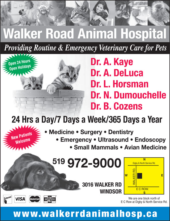 Walker Road Animal Hospital (519-972-9000) - Display Ad - Providing Routine & Emergency Veterinary Care for Pets Dr. A. Kaye Open 24 Hours Open Holidays New Patients Walker Road Animal Hospital Dr. A. DeLuca Dr. L. Horsman Dr. N. Dumouchelle Dr. B. Cozens 24 Hrs a Day/7 Days a Week/365 Days a Year Medicine   Surgery   Dentistry Emergency   Ultrasound   Endoscopy Welcome Small Mammals   Avian Medicine Digby & North Service Rd. 519 972-9000 E W 3016 WALKER RD E C ROW. WINDSOR We are one block north of E C Row at Digby & North Service Rd. www.walkerrdanimalhosp.ca ALKER R