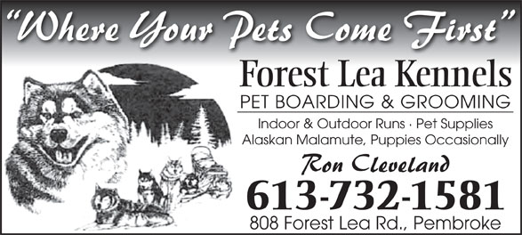 Forest Lea Kennels (613-732-1581) - Annonce illustrée======= - Forest Lea Kennels PET BOARDING & GROOMING Indoor & Outdoor Runs · Pet Supplies Alaskan Malamute, Puppies Occasionally 613-732-1581 808 Forest Lea Rd., Pembroke