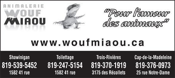 Animalerie Club Wouf Miaou Shawinigan (819-539-5452) - Annonce illustrée======= - Pour l amour des animaux www.woufmiaou.ca Toilettage Trois-RivièresShawinigan Cap-de-la-Madeleine 819-247-5154 819-370-1919819-539-5452 819-376-0973 1582 41 rue 3175 des Récollets1582 41 rue 25 rue Notre-Dame CLUB