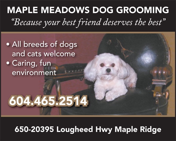 Maple Meadows Dog Grooming (604-465-7600) - Annonce illustrée======= - MAPLE MEADOWS DOG GROOMING All breeds of dogs and cats welcome Caring, fun environment 604.465.2514 650-20395 Lougheed Hwy Maple Ridge MAPLE MEADOWS DOG GROOMING All breeds of dogs and cats welcome Caring, fun environment 604.465.2514 650-20395 Lougheed Hwy Maple Ridge