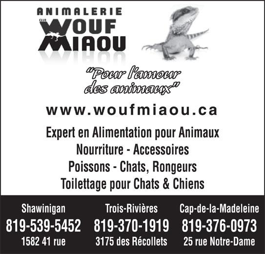 Animalerie Club Wouf Miaou Shawinigan (819-539-5452) - Annonce illustrée======= - CLUB Pour l amour des animaux www.woufmiaou.ca Expert en Alimentation pour Animaux Nourriture - Accessoires Poissons - Chats, Rongeurs Toilettage pour Chats & Chiens Trois-RivièresShawinigan Cap-de-la-Madeleine 819-370-1919819-539-5452 819-376-0973 3175 des Récollets1582 41 rue 25 rue Notre-Dame