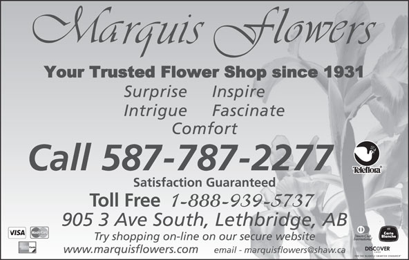 Marquis Flower Shop (403-327-1515) - Display Ad - Call 587-787-2277 Satisfaction Guaranteed Toll Free 1-888-939-5737 905 3 Ave South, Lethbridge, AB Try shopping on-line on our secure website www.marquisflowers.com Surprise Inspire Intrigue Fascinate Comfort