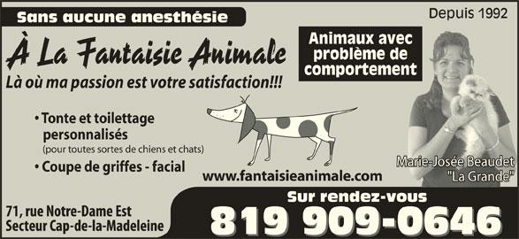 """A La Fantaisie Animale (819-909-0646) - Annonce illustrée======= - Depuis 1992 Sans aucune anesthésie Animaux avec problème de À La Fantaisie Animale comportement Là où ma passion est votre satisfaction!!! Tonte et toilettage personnalisés (pour toutes sortes de chiens et chats) Marie-Josée BeaudetMarie-Josée Beaudet Coupe de griffes - facial www.fantaisieanimale.com """"La Grande""""de""""anGr""""La Sur rendez-vous"""