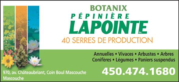Pépinière Lapointe (450-474-1680) - Annonce illustrée======= - BOTANIX Annuelles   Vivaces   Arbustes   Arbres Conifères   Légumes   Paniers suspendus 970, av. Châteaubriant, Coin Boul Mascouche Mascouche