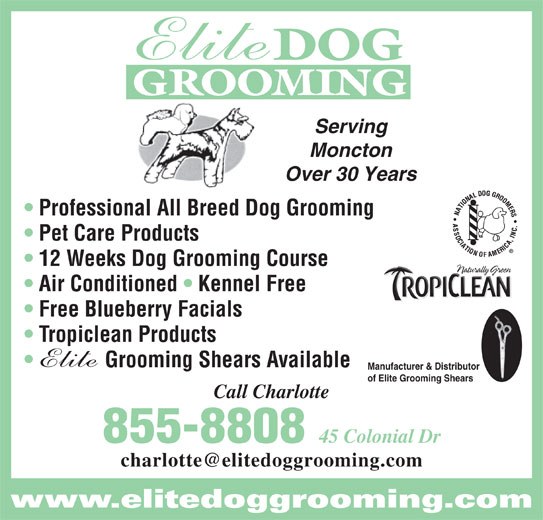 Elite Dog Grooming (506-855-8808) - Display Ad - GROOMING Serving Moncton Over 30 Years Professional All Breed Dog Grooming Pet Care Products 12 Weeks Dog Grooming Course Air Conditioned   Kennel Free Free Blueberry Facials Tropiclean Products Grooming Shears Available Manufacturer & Distributor of Elite Grooming Shears Call Charlotte 855-8808 45 Colonial Dr www.elitedoggrooming.com DOG