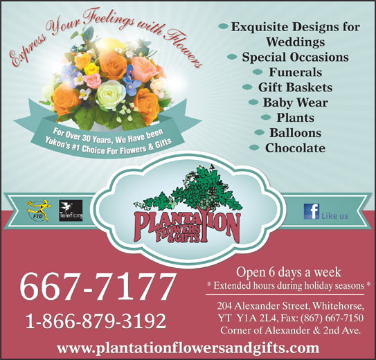 Plantation Flowers & Gifts (867-667-7177) - Display Ad - Weddings Special Occasions Express Your Feelings with Flowers Funerals Gift Baskets Baby Wear Plants For Over 30 Years, We Have been Yukon s #1 Choice For Flowers & Gifts For Ovbeen For Over30 Ye Y Balloons Yars,We Havebeen Yukon n s s# Gifts #1 1 C &G Ch s& rs hoi Chocolate er ice For Fl lowe Open 6 days a week * Extended hours during holiday seasons * 667-7177 204 Alexander Street, Whitehorse, YT  Y1A 2L4, Fax: (867) 667-7150 1-866-879-3192 Corner of Alexander & 2nd Ave. www.plantationflowersandgifts.com Exquisite Designs for