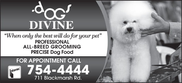 Dogs Divine (709-754-4444) - Display Ad - PROFESSIONAL When only the best will do for your pet ALL-BREED GROOMING PRECISE Dog Food FOR APPOINTMENT CALL 754-4444 711 Blackmarsh Rd. When only the best will do for your pet PROFESSIONAL ALL-BREED GROOMING PRECISE Dog Food FOR APPOINTMENT CALL 754-4444 711 Blackmarsh Rd.