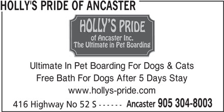 Holly's Pride Of Ancaster (905-304-8003) - Display Ad - HOLLY'S PRIDE OF ANCASTER Ultimate In Pet Boarding For Dogs & Cats Free Bath For Dogs After 5 Days Stay www.hollys-pride.com Ancaster 905 304-8003 416 Highway No 52 S ------