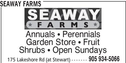 Seaway Farms (905-934-5066) - Display Ad - SEAWAY FARMS Annuals  Perennials Garden Store  Fruit Shrubs  Open Sundays 905 934-5066 175 Lakeshore Rd (at Stewart) -------