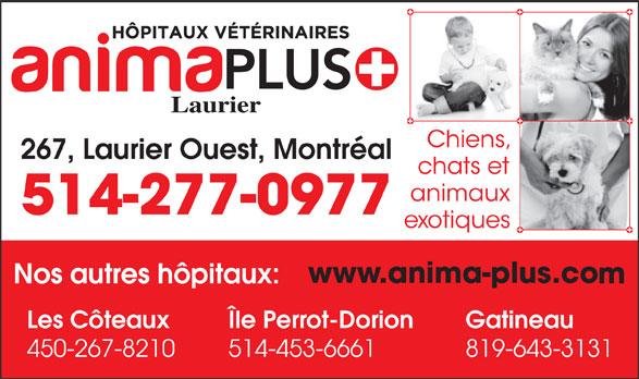 Groupe Vétérinaire Anima-Plus (514-277-0977) - Annonce illustrée======= - Laurier 267, Laurier Ouest, Montréal GatineauLes Côteaux Île Perrot-Dorion 450-267-8210 514-453-6661 819-643-3131 514-277-0977