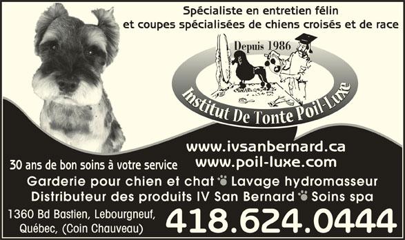Institut De Tonte Poil-Luxe (418-624-0444) - Annonce illustrée======= - Québec, (Coin Chauveau) 418.624.0444 Spécialiste en entretien félin et coupes spécialisées de chiens croisés et de raceet Depuis 1986 www.ivsanbernard.ca www.poil-luxe.com 30 ans de bon soins à votre service Garderie pour chien et chat   Lavage hydromasseur Distributeur des produits IV San Bernard   Soins spa 1360 Bd Bastien, Lebourgneuf,