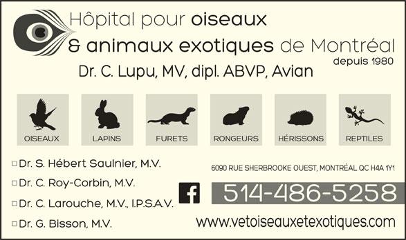 Hôpital Vétérinaire pour Oiseaux et Animaux Exotiques (514-486-5258) - Annonce illustrée======= -