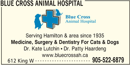 Blue Cross Animal Hospital (905-522-6879) - Display Ad - BLUE CROSS ANIMAL HOSPITAL Serving Hamilton & area since 1935 Medicine, Surgery & Dentistry For Cats & Dogs Dr. Kate Lutchin ! Dr. Patty Haardeng www.bluecrossah.ca ----------------------- 905-522-6879 612 King W BLUE CROSS ANIMAL HOSPITAL