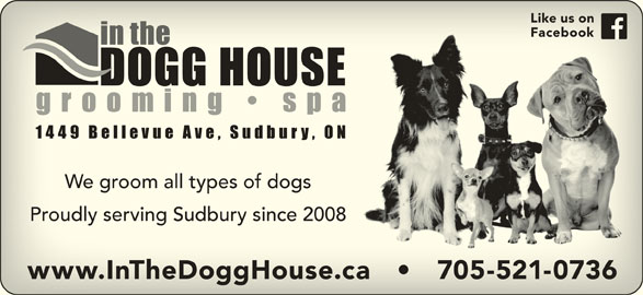 In The Dogg House Grooming Spa (705-521-0736) - Display Ad - Like us onLike us on FacebookFacebook We groom all types of dogsWe groom all types of dogs Proudly serving Sudbury since 2008Proudly serving Sudbury since 2008 www.InTheDoggHouse.ca       705-521-0736www.InTheDoggHouse.ca       705-521-0736