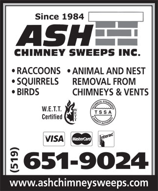 Ash Chimney Sweeps Inc (519-651-9024) - Annonce illustrée - RACCOONS ANIMAL AND NEST SQUIRRELS REMOVAL FROM BIRDS CHIMNEYS & VENTS W.E.T.T. Certified 651-9024 (519) www.ashchimneysweeps.com