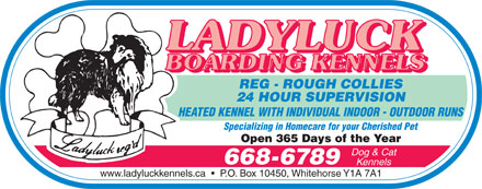 Ladyluck Boarding Kennels (867-668-6789) - Annonce illustr&eacute;e - REG - ROUGH COLLIES 24 HOUR SUPERVISION HEATED KENNEL WITH INDIVIDUAL INDOOR - OUTDOOR RUNS Specializing in Homecare for your Cherished Pet Open 365 Days of the Year Dog &amp; Cat 668-6789 Kennels www.ladyluckkennels.ca     P.O. Box 10450, Whitehorse Y1A 7A1