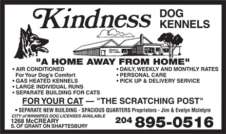 "Kindness Dog Kennels (204-895-0516) - Annonce illustrée - DOG KENNELS ""A HOME  AW AY  FROM HOME"" AIR CONDITIONED DA IL Y,   WEEKL Y AND MONTHL Y RA TE S For  Yo ur Dog's Comf or t PERSONAL CARE GAS HEA TED KENNEL S PICK UP & DELIVER Y SER VICE LARGE INDIVIDU AL R UNS SEP ARA TE BUILDING FOR CA TS FOR  Y OUR CA T   ""THE SCRA TCHING POST"" SEP ARA TE NEW BUILDING - SP ACIOUS QUAR TERS Proprietors - Jim & Evelyn McIntyre CITY  of  WINNIPEG  DOG  LICENSES  AVA I LABLE 1268 McCREAR Y 204 895-0516 S.   OF  G RANT  ON  SHAFTESBUR Y"