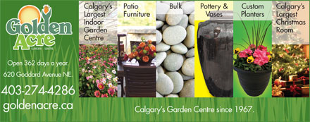Golden Acre Garden Centre (403-766-9207) - Annonce illustrée - Calgary s Calgary s Patio Bulk Pottery & Custom Largest LargestFurniture Vases Planters Indoor Christmas Garden Room Centre GARDEN SENTRE Open 362 days a year. 620 Goddard Avenue NE. 403-274-4286 goldenacre.ca Calgary s Garden Centre since 1967.