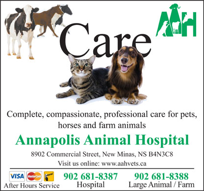Annapolis Animal Hospital (902-681-8387) - Annonce illustrée