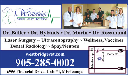 Westbridge Veterinary Hospital (905-285-0002) - Display Ad - Dr. Buller   Dr. Hylands   Dr. Morin   Dr. Rosamund Laser Surgery ~ Ultrasonography ~ Wellness, Vaccines Dental Radiology ~ Spay/Neuters westbridgevet.com 905-285-0002 6956 Financial Drive, Unit #4, Mississauga  Dr. Buller   Dr. Hylands   Dr. Morin   Dr. Rosamund Laser Surgery ~ Ultrasonography ~ Wellness, Vaccines Dental Radiology ~ Spay/Neuters westbridgevet.com 905-285-0002 6956 Financial Drive, Unit #4, Mississauga