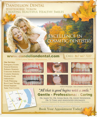 Dandelion Dental Clinic (867-667-7227) - Annonce illustr&eacute;e