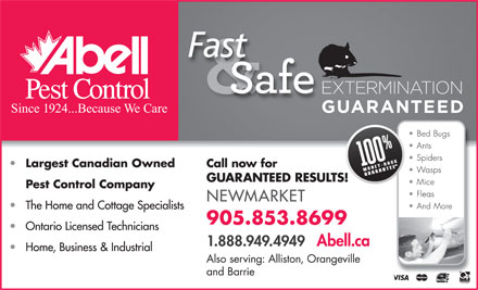 Abell Pest Control (905-853-8699) - Display Ad