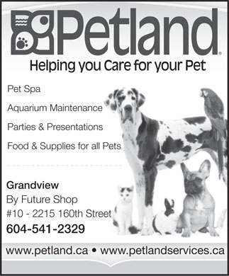 Petland (604-541-2329) - Annonce illustrée - Helping you Care for your Pet Pet Spa Aquarium Maintenance Parties & Presentations Food & Supplies for all Pets Grandview By Future Shop #10 - 2215 160th Street 604-541-2329 www.petland.ca   www.petlandservices.ca