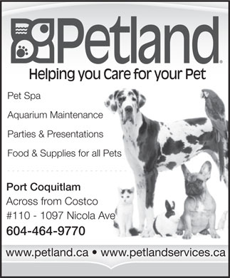 Petland - Port Coquitlam (604-464-9770) - Annonce illustrée - Helping you Care for your Pet Pet Spa Aquarium Maintenance Parties & Presentations Food & Supplies for all Pets Port Coquitlam Across from Costco #110 - 1097 Nicola Ave 604-464-9770 www.petland.ca   www.petlandservices.ca