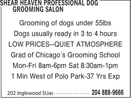 Shear Heaven Professional Dog Grooming Salon (204-888-9666) - Annonce illustrée - Grooming of dogs under 55lbs Dogs usually ready in 3 to 4 hours LOW PRICES--QUIET ATMOSPHERE Grad of Chicago's Grooming School Mon-Fri 8am-6pm Sat 8:30am-1pm 1 Min West of Polo Park-37 Yrs Exp Dogs usually ready in 3 to 4 hours LOW PRICES--QUIET ATMOSPHERE Grad of Chicago's Grooming School Mon-Fri 8am-6pm Sat 8:30am-1pm 1 Min West of Polo Park-37 Yrs Exp Grooming of dogs under 55lbs Dogs usually ready in 3 to 4 hours LOW PRICES--QUIET ATMOSPHERE Grad of Chicago's Grooming School Mon-Fri 8am-6pm Sat 8:30am-1pm 1 Min West of Polo Park-37 Yrs Exp Grooming of dogs under 55lbs